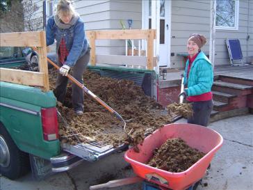 shoveling-dirt1.png