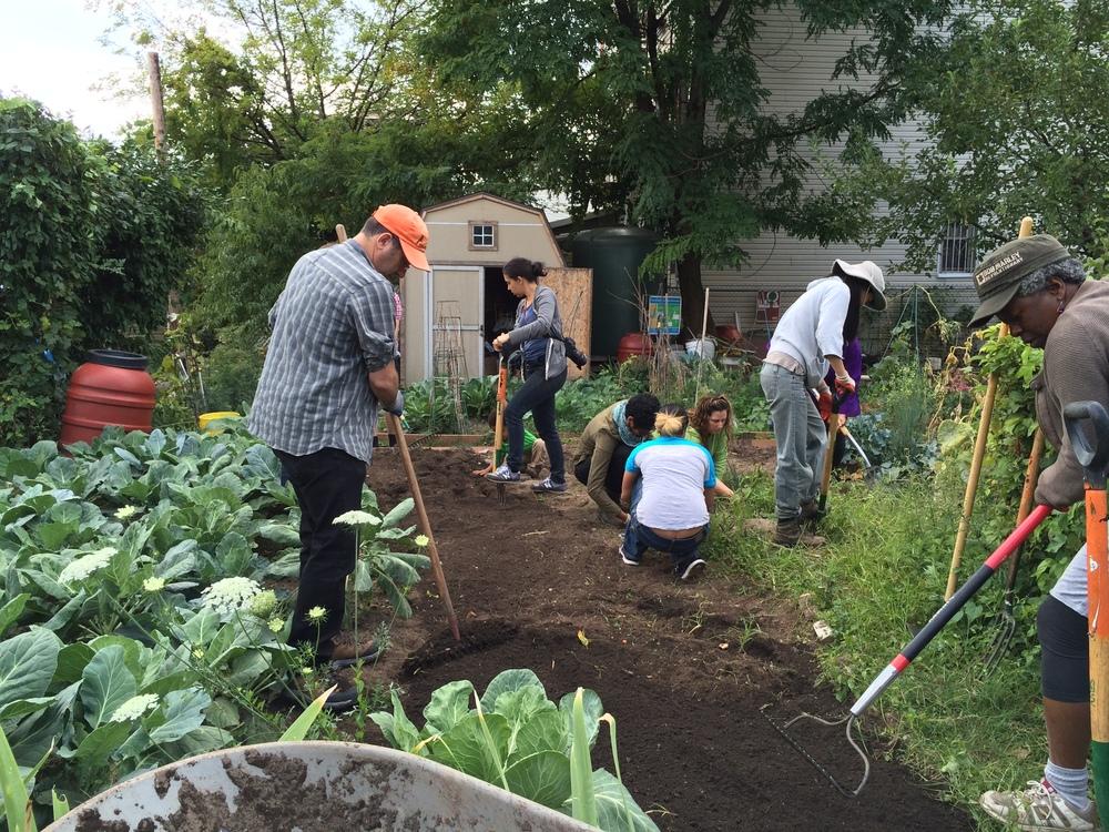 GardeningFarmNYC.jpeg