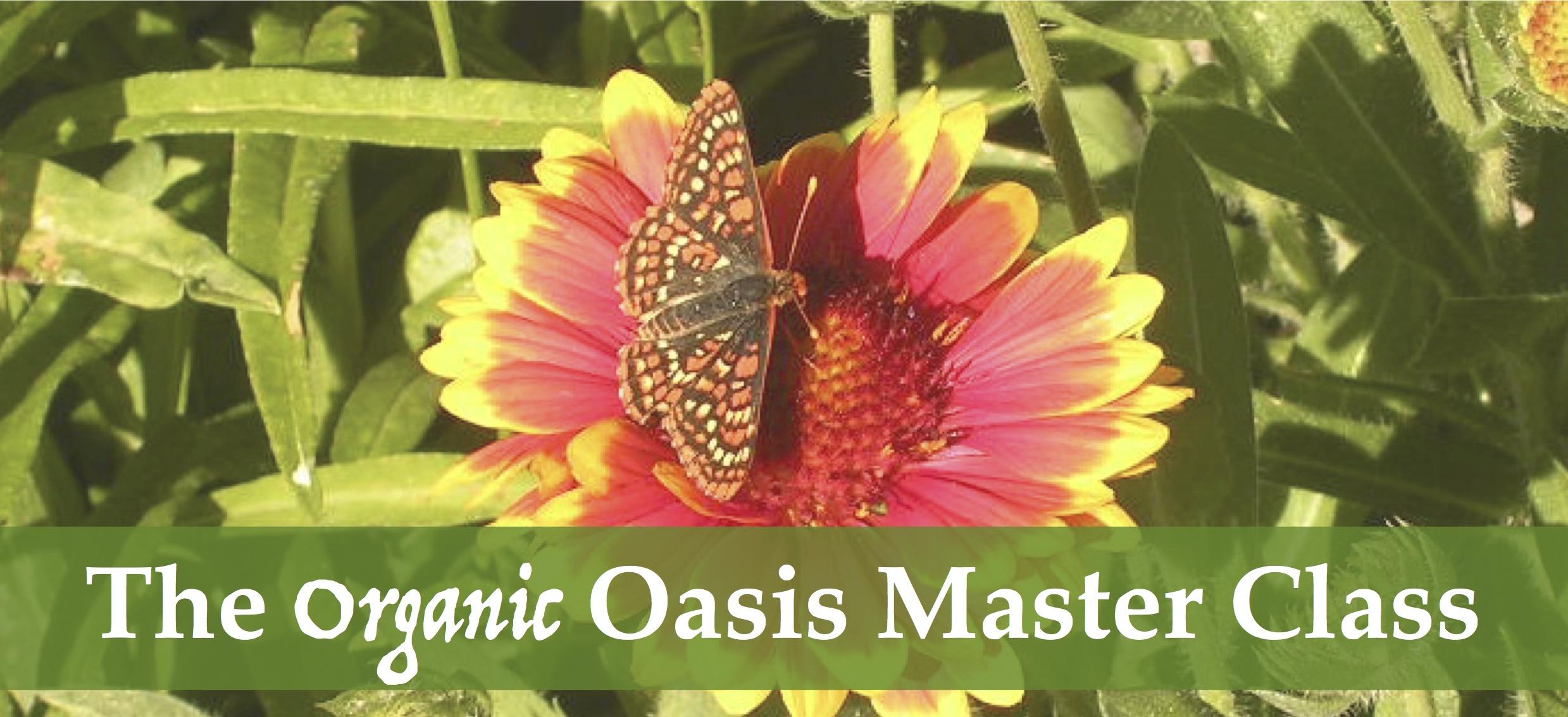 organic oasis master class learn to garden organically