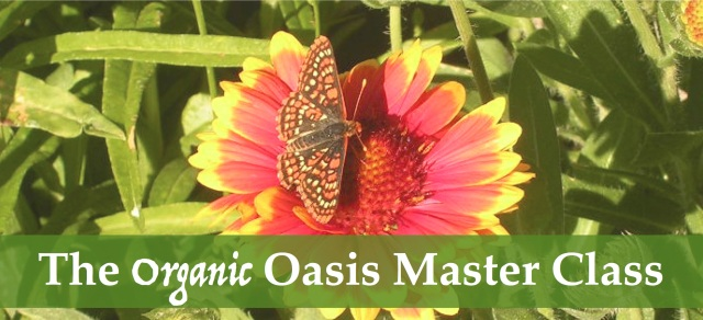 organic oasis master class learn to garden organically