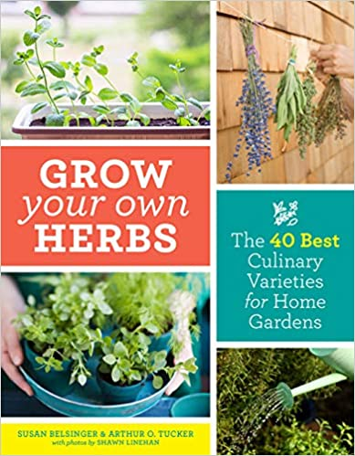 Grow Your Own Herbs- The 40 Best Culinary Varieties for Home Gardens